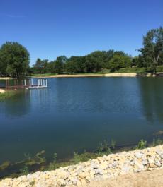 Garnet Pond NH