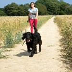 woman-and-dog-walking