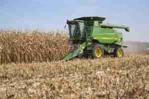 Farmer In A John Deere Combine Harvesting Corn