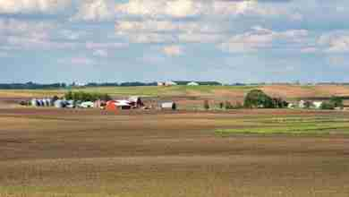 Photo of Farmland Values Declining, Owners Optimistic It Will Rise Again