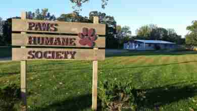 Photo of PAWS Fall Rummage Sale promises to be BIG