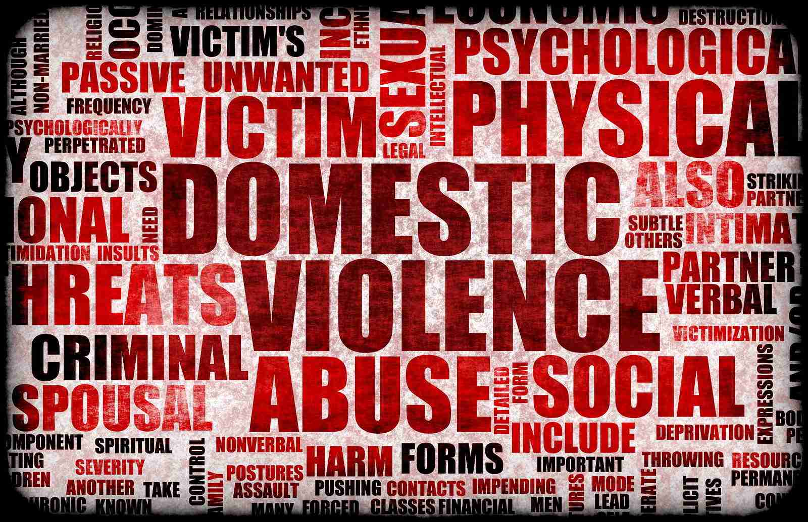 an analysis of the spousal assault in the case of domestic violence