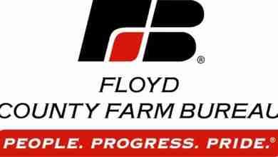 Photo of Last weekend's 'Floyd County Farm Bureau Auction' on KCHA doesn't skip a beat